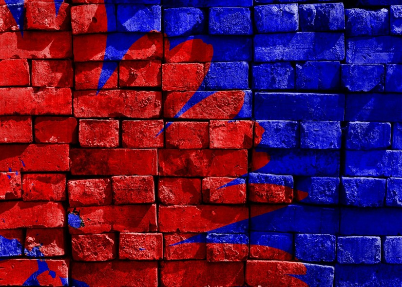red and blue flower art wall